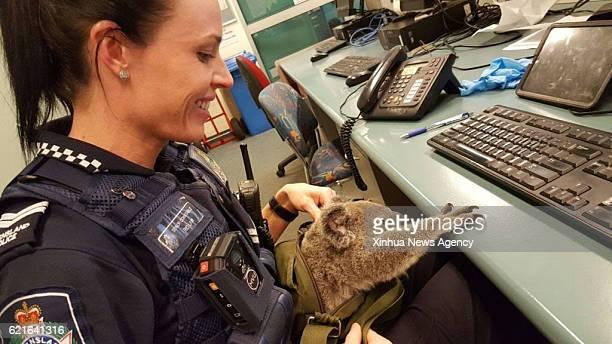 SYDNEY Nov 7 2016 A policewoman holds a baby koala tucked inside a handbag in Australia's Queensland Nov 6 2016 Australian Queensland police have...