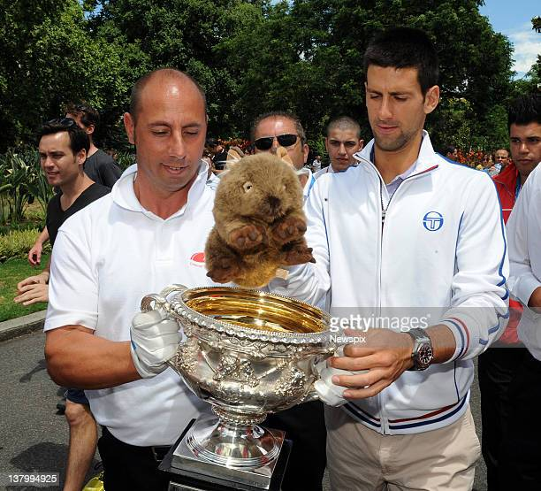 Novak Djokovic of Serbia puts 'Fatso the Wombat' into the Norman Brookes Challenge Cup after winning the 2012 men's Australian Open at Carlton...