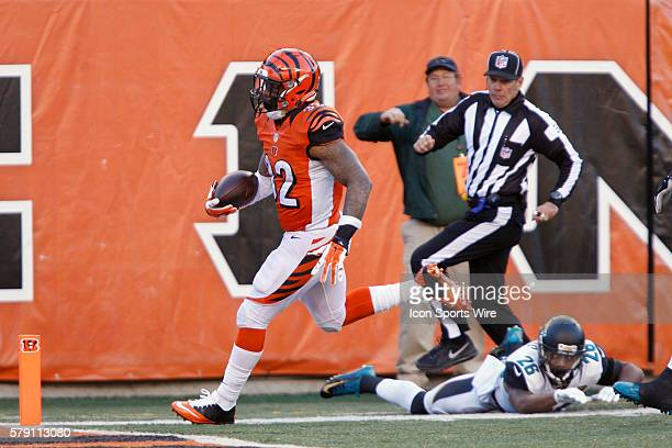 Cincinnati Bengals running back Jeremy Hill scores on a 60yard touchdown run during the fourth quarter of the Bengals 3323 win over the Jacksonville...
