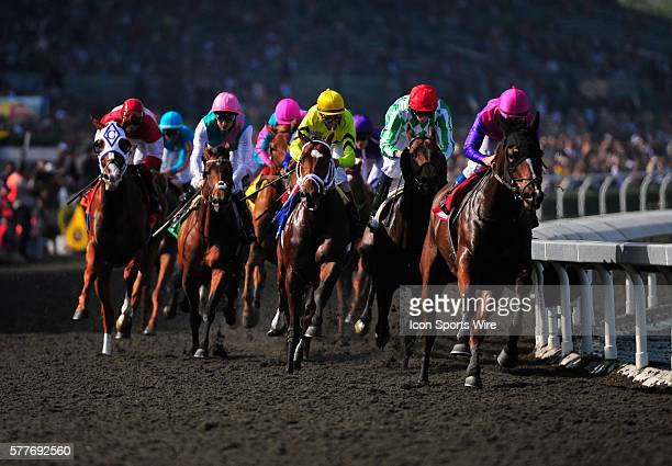 November 06 2009 A pack of race horses lead by Black Astor jockey Alex Solis NITE LIGHT john velazquez during a race at Santa Anita Race track in...