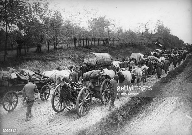 Hordes of Serbians retreat with their belongings under the combined onslaught of Austria and Bulgaria during World War I