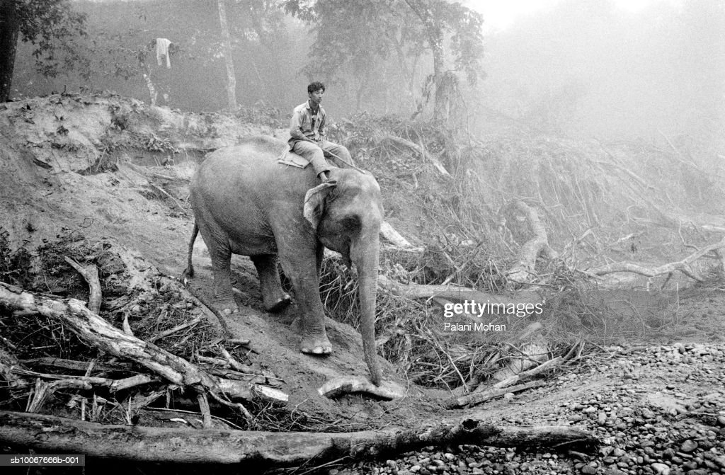 Nepal, Chitwan National Park, man and elephant on muddy forest road