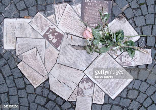 In front of the entrance to the main building of the LudwigMaximiliansUniversität at GeschwisterSchollPlatz the leaflets of the resistance group...