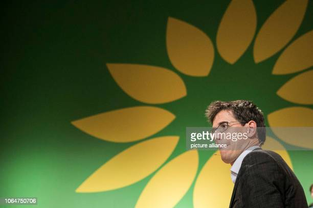 November 2018, Berlin: Bas Eickhout at the 29th European Council of Bündnis 90/Die Grünen after the election as one of the top candidates of the...