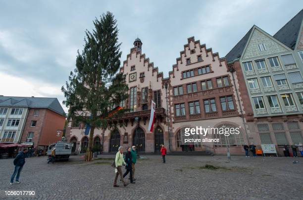 An approximately 30 meter high spruce stands as a Christmas tree on the Römerberg When the Christmas market officially opens on 26 November the tree...