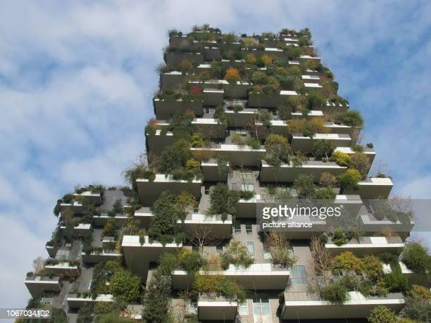The Bosco Verticale by the Milanese architect Stefano Boeri Plants provide shade and form oxygen Two to three degrees difference is measured between...