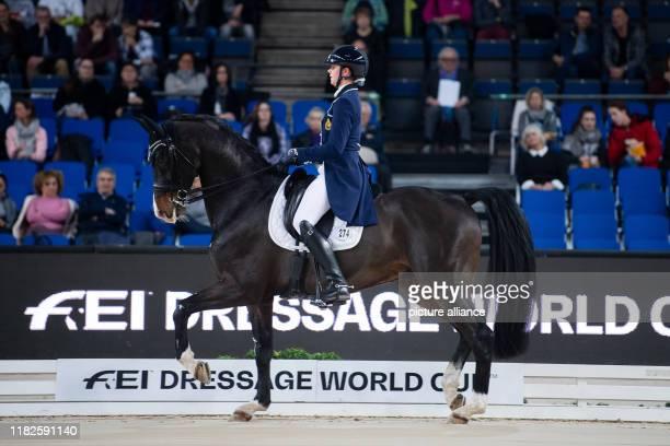 November 2019, Baden-Wuerttemberg, Stuttgart: 35th Stuttgart German Masters, equestrian sport, dressage, World Cup, qualification for the freestyle:...