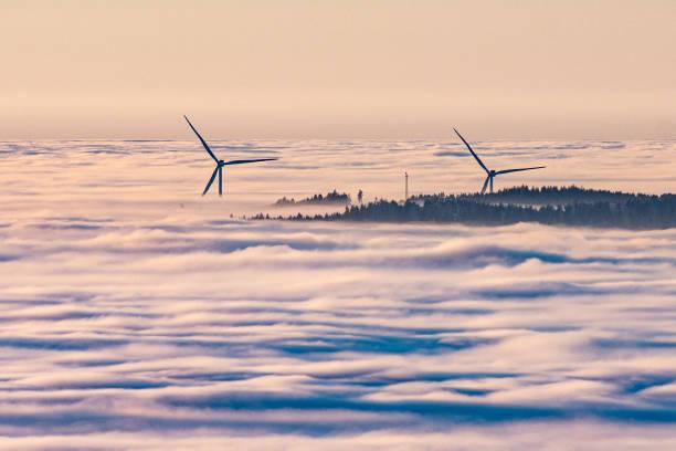DEU: Fog In The Bavarian Forest