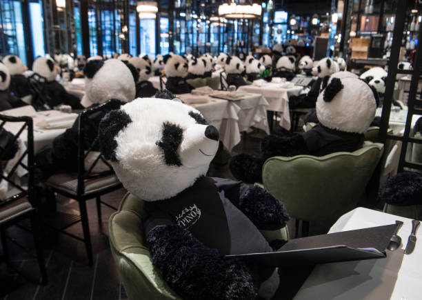 DEU: Coronavirus - Panda-Mie Takes Lockdown Ironically