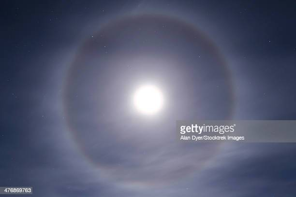 November 22, 2004 - Halo around full moon taken near Gleichen, Alberta, Canada.