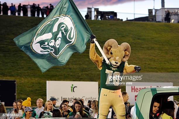 Colorado State's costumed mascot