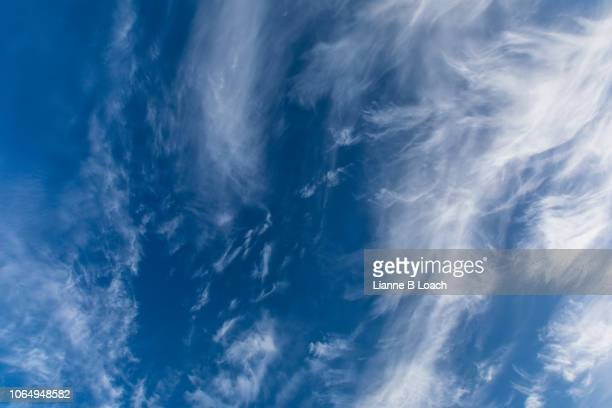 november cloud - lianne loach stock pictures, royalty-free photos & images