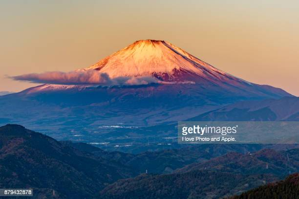 November Red Fuji