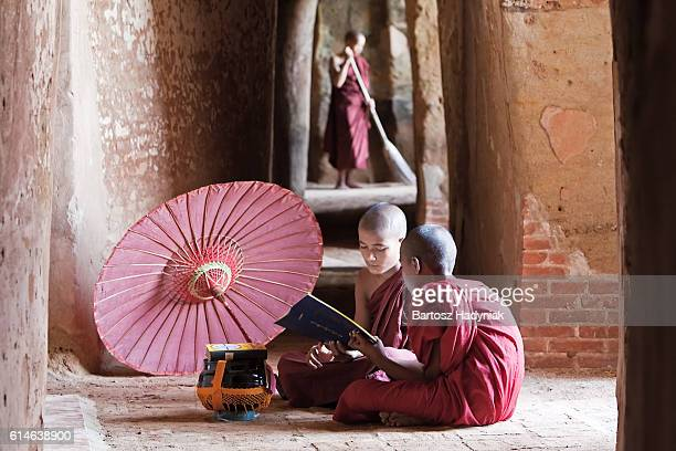 novice buddhist monk reading a book inside the temple - kambodschanische kultur stock-fotos und bilder