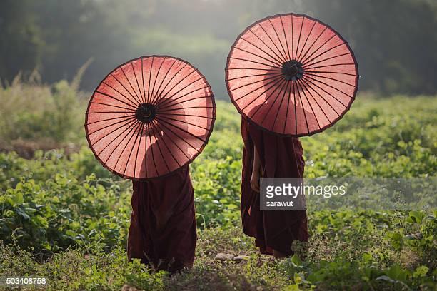 novice buddhist monks, myanmar - myanmar fotografías e imágenes de stock