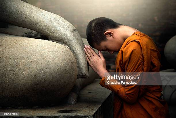 novice monk - monk stock pictures, royalty-free photos & images