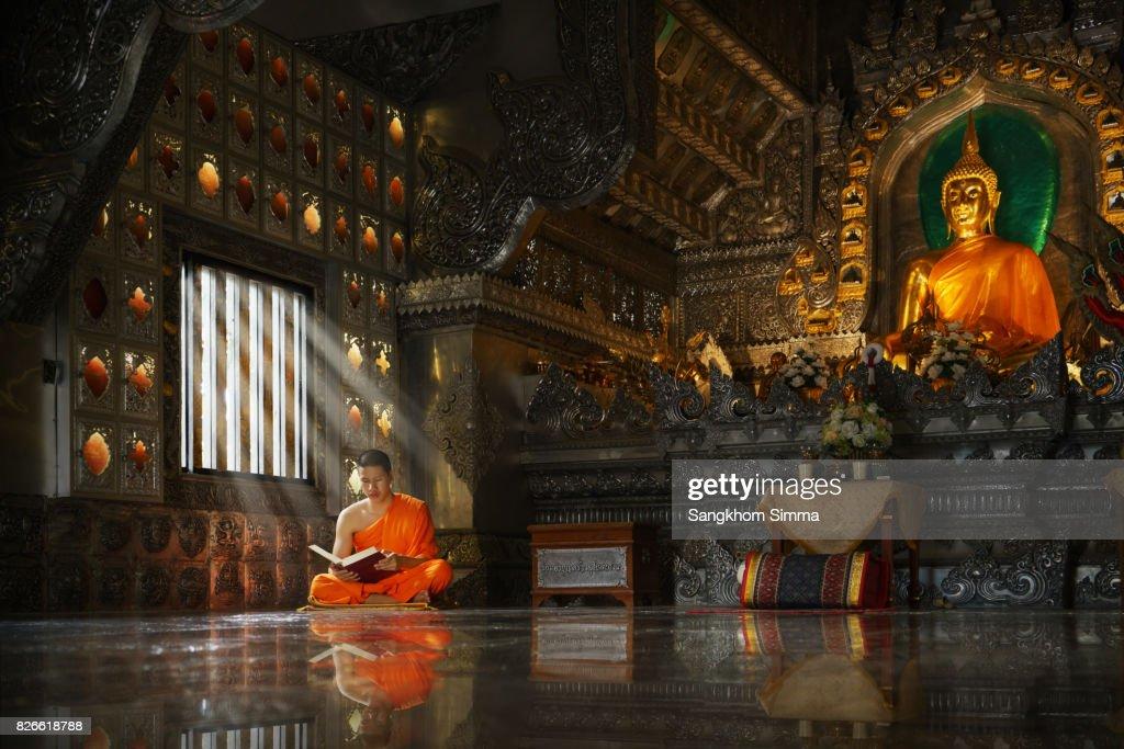 Novice monk reading the Holy book. : Foto de stock