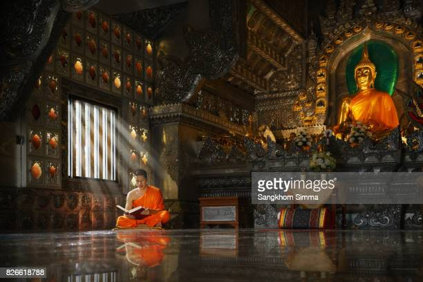 novice monk reading the holy book. - provincia di chiang mai foto e immagini stock