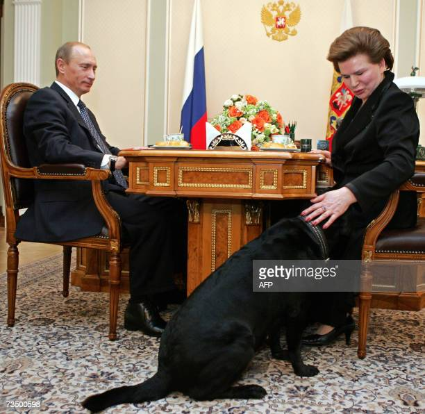 23 Putin Koni Photos And Premium High Res Pictures Getty Images