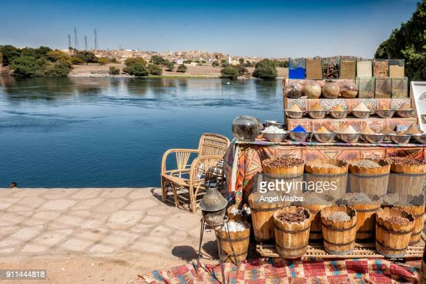 nubia - nubia stock pictures, royalty-free photos & images