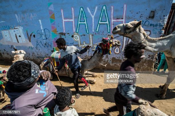 Nubian boys lead camels along an alley in the village of Gharb Suhail near Aswan in Upper Egypt, some 920 kilometres south of the capital Cairo, on...