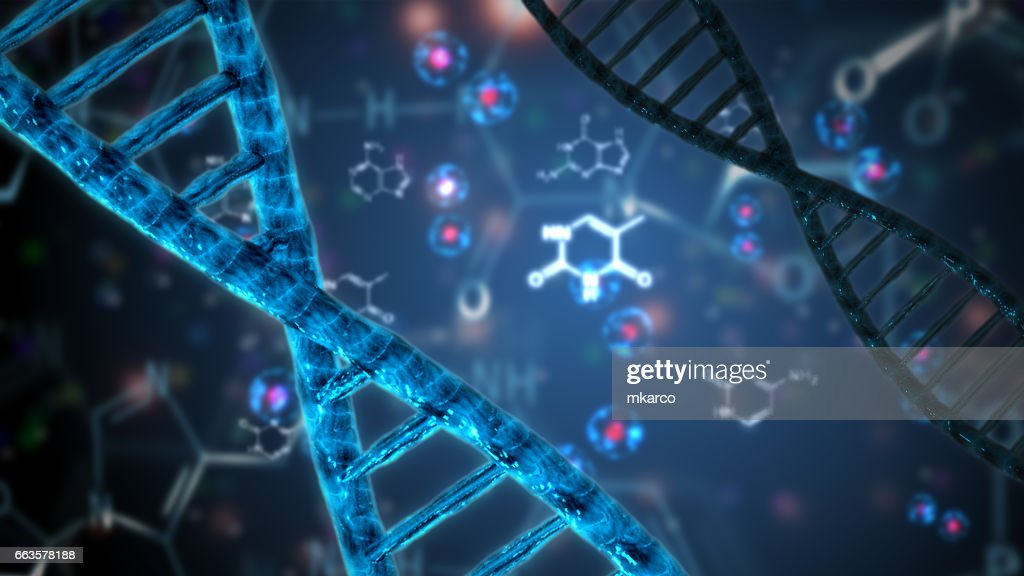 nucleic acid double helix dna : Stock Photo