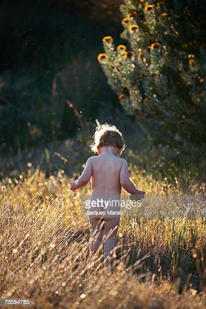 Nude Baby Girl Walking in the Grass - Rear View