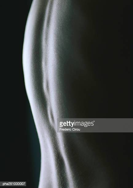 nude back, close-up - menschlicher rücken stock-fotos und bilder