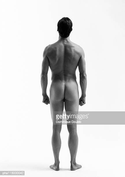 nude man standing, rear view, b&w - hombre desnudo fondo blanco fotografías e imágenes de stock