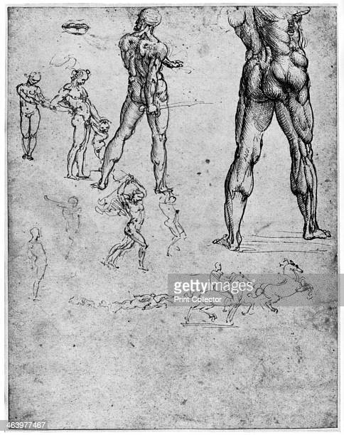 Nude studies for 'The Battle of Anghiari' c15031505 Found in the collection of the Biblioteca Reale Turin A print from Leonardo da Vinci by Ludwig H...
