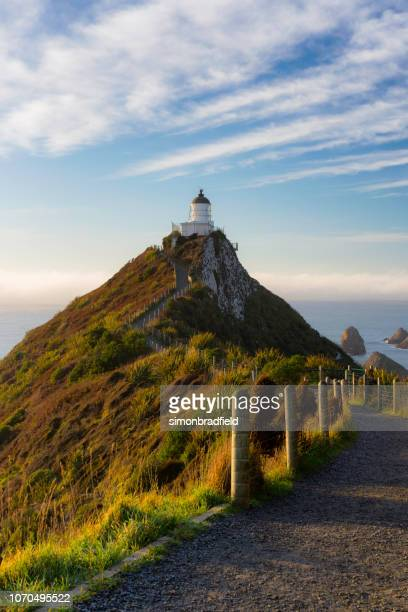 Nugget Point Lighthouse At Dawn