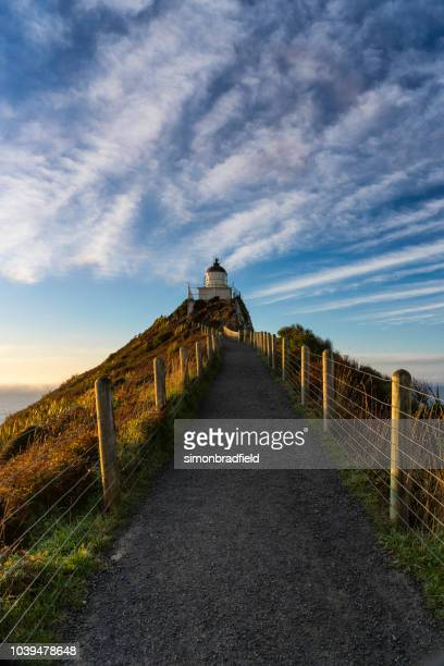Nugget Point Lighthouse In The Morning Light
