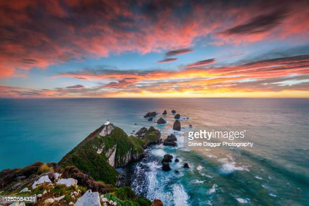 nugget point sunrise - new zealand stock pictures, royalty-free photos & images