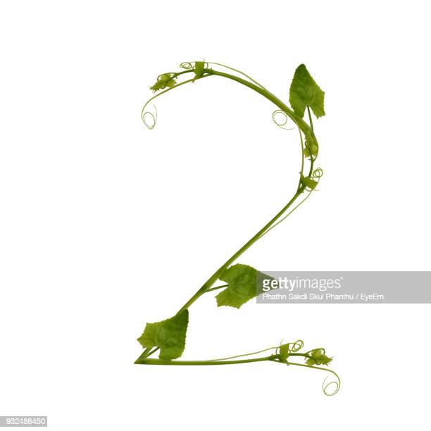 number 2 made with plant against white background - number 2 stock pictures, royalty-free photos & images