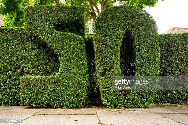 number 50 cut and carved into hedge outside residential house on public street - トピアリー ストックフォトと画像