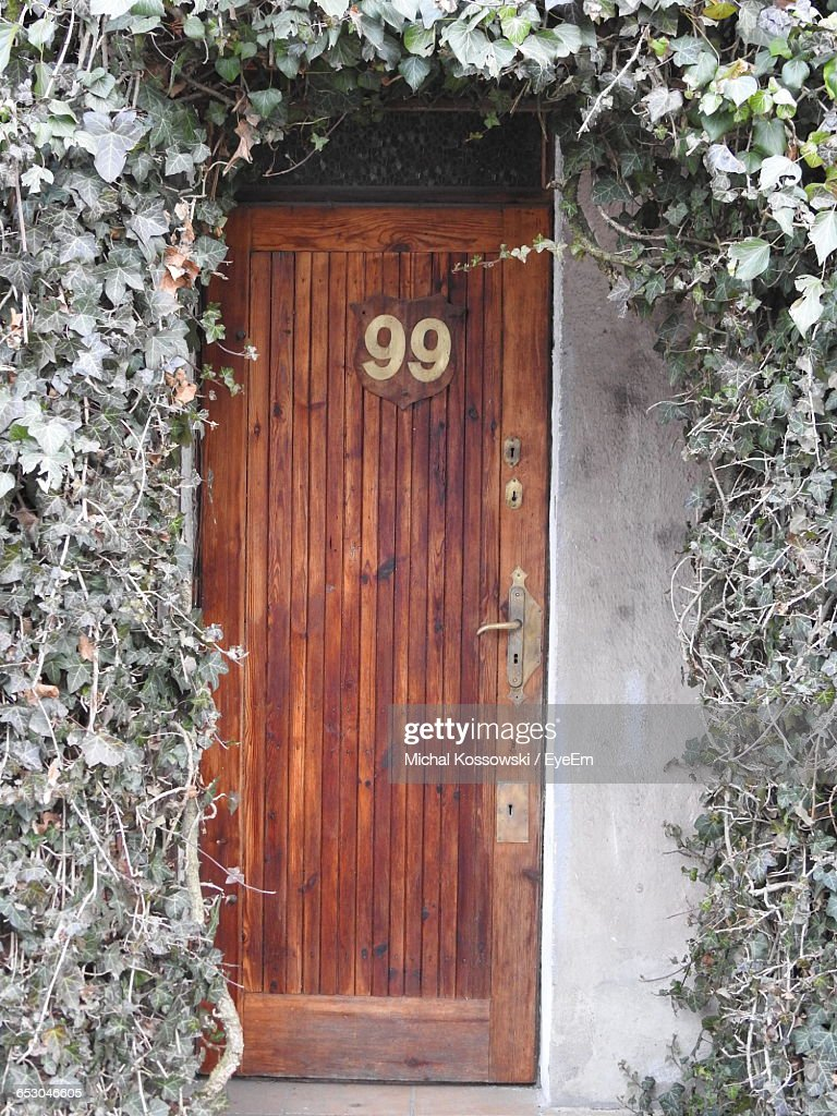 Number 99 House Address On Door With Ivy High