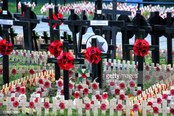 Number of crosses and poppies are placed by a variety of military regiments and organizations in front of the Abbey prior to the Remembrance Day...