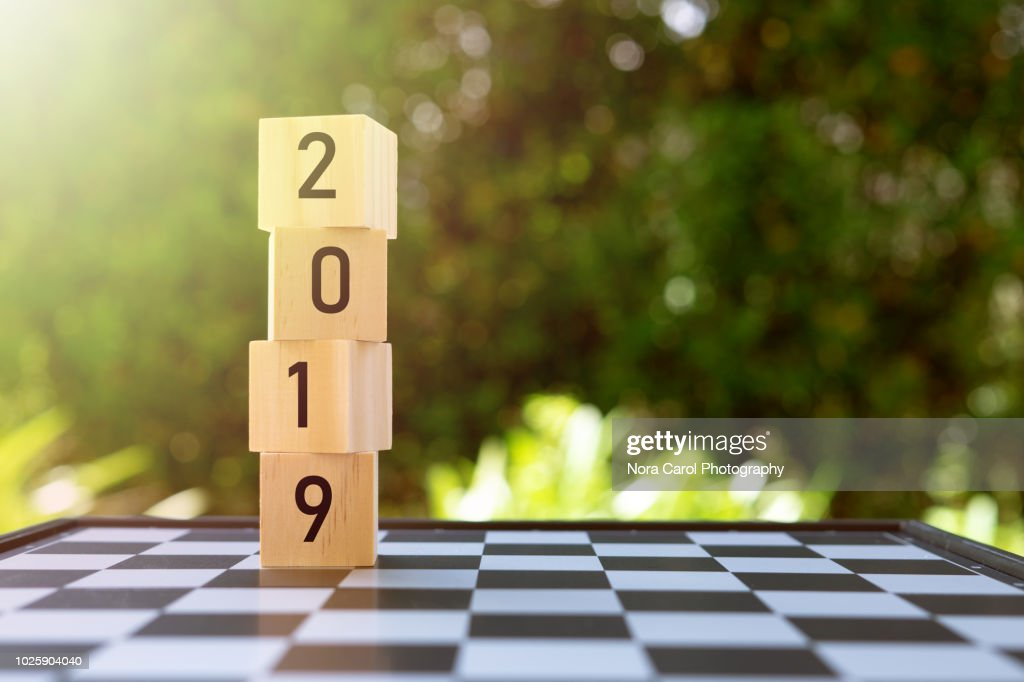2019 Numbers on Wooden Blocks : Stock Photo
