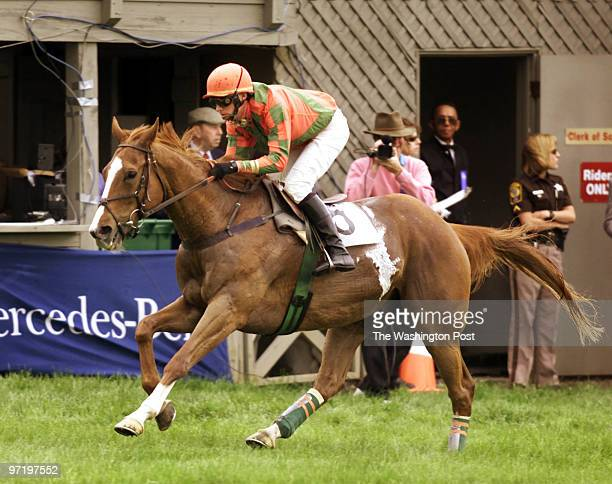 woodwardt 124545 Virginia Gold Cup Races 77th Running Great Meadow The Plains VA This is JockeyJack Fisher winning the Jos A Bank Steeplethon on...