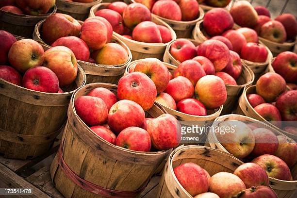 numerous baskets of apples - basket stock photos and pictures