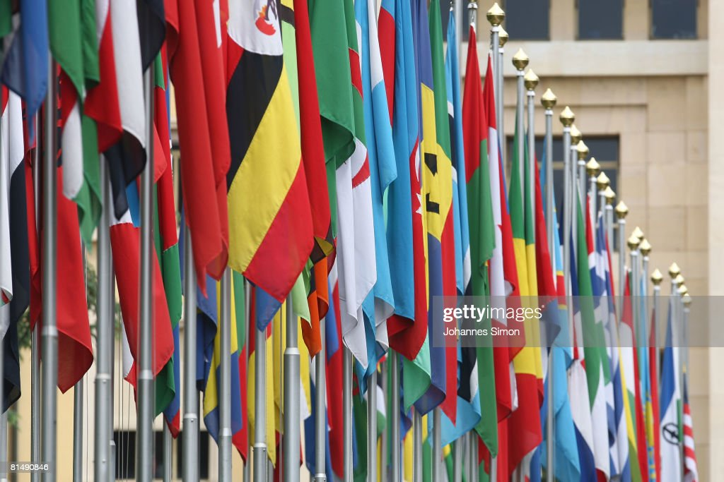 numerous national flags are seen in front of the united nations