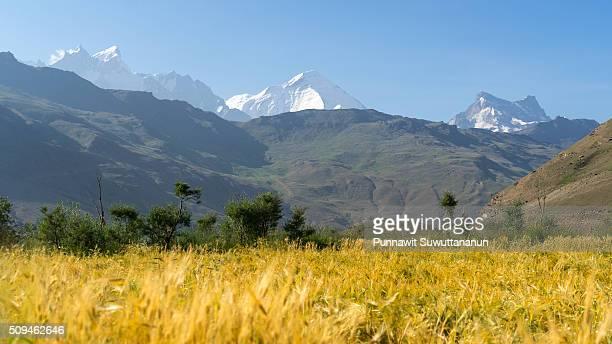 nun and kun mountain peak, zanskar valley - nun stock-fotos und bilder