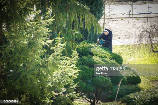 A nun is seen pruning boscage at a monastery in central Warsaw Poland on March 23 2020