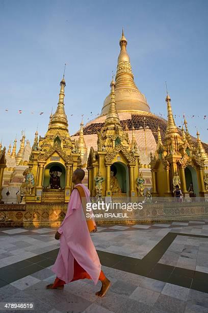 CONTENT] Nun walking around the Shwedagon paya Rangoon or Yangon in Burma also called Myanmar