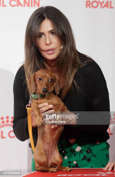 Nuria Roca and her teckel dog Pepita attend the 'Royal Canin' photocall at Mr Fox studio on November 20 2018 in Madrid Spain