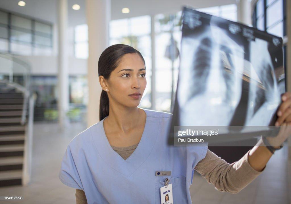 Nurse examining chest x-rays in hospital : Stock Photo