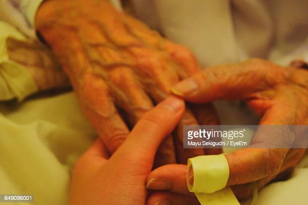 Nurse Holding Hands Of Senior Person