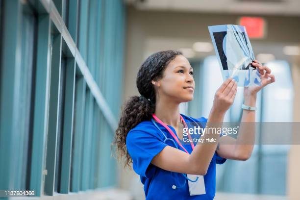nurse or hospital intern studying patient x-ray - radiologist stock pictures, royalty-free photos & images