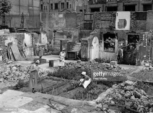 Nurses and staff from Guy's Hospital tend to their vegetable allotment garden as a part of the Dig for Victory war effort campaign on the reclaimed...