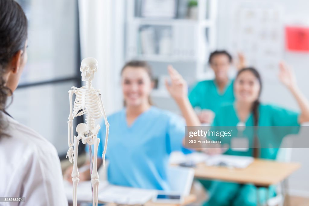 Nursing Students Raise Their Hands During Anatomy Class Stock Photo ...